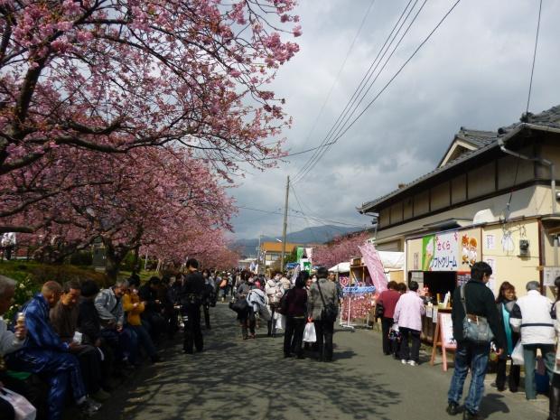 桜祭りでお店も沢山
