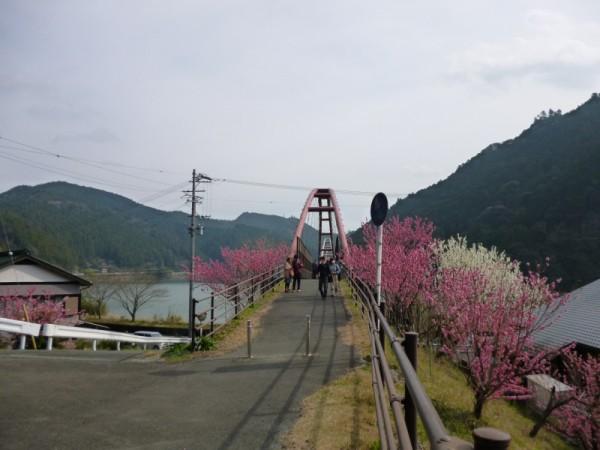 船明ダム湖に架けられた歩行者・自転車専用の橋「夢のかけ橋」