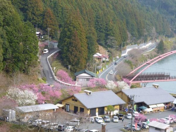 山の上から見た道の駅