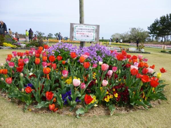 ボランティアの皆さんの花壇テーマ「夢」