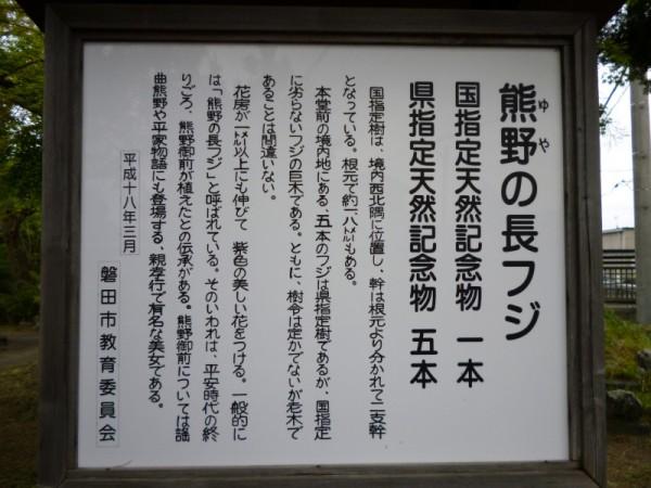 熊野の長藤 案内板