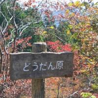 はなさんぽ通信「日本気象協会の紅葉情報」
