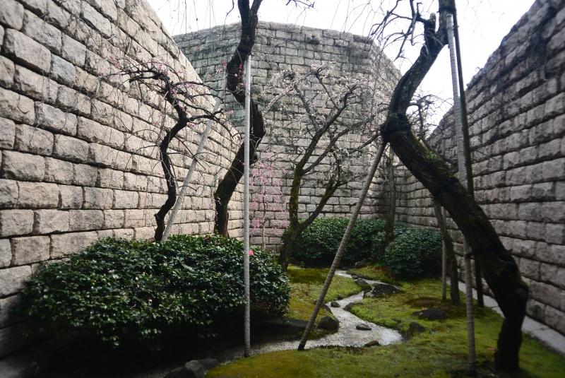 芹沢銈介美術館 坪庭のしだれ梅(静岡市)