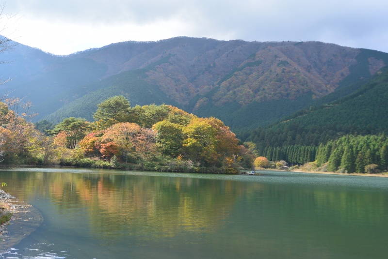 田貫湖の紅葉(富士宮市)