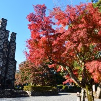 江川邸・韮山反射炉の紅葉(伊豆の国市)