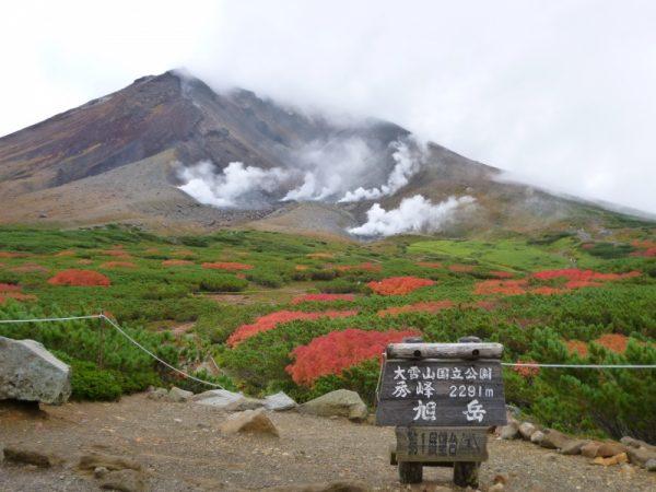 はなさんぽ通信「大雪山旭岳の紅葉」