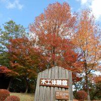 静岡県立森林公園の紅葉始まる(浜松市)